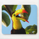 Toucan Mousepad  No Text or Add Your Own Text