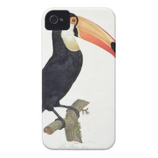Toucan No.2, de la 'historia de los pájaros de Par Case-Mate iPhone 4 Coberturas