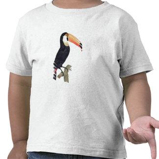 Toucan No.2, de la 'historia de los pájaros de Camiseta