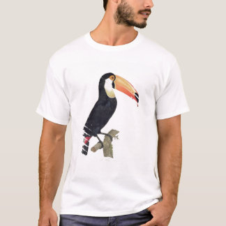 Toucan No.2, de la 'historia de los pájaros de Playera