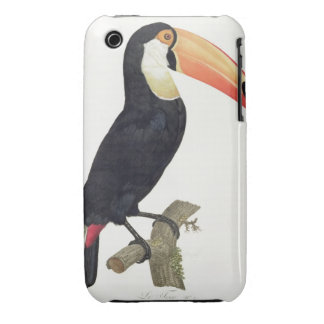 Toucan No.2, from 'History of the Birds of Paradis iPhone 3 Case