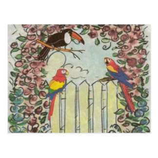 Toucan & Parrots on Picket Fence in Rose Arbor Postcard