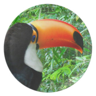 """""""Toucan"""" plate"""