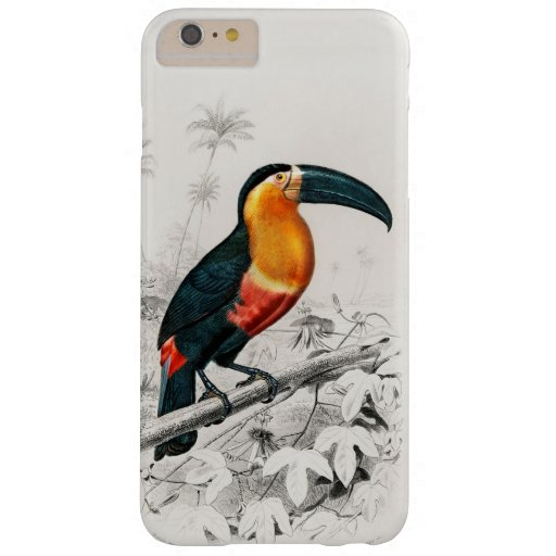 Toucan Ramphastos Illustration Vintage Art Print Barely There iPhone 6 Plus Case