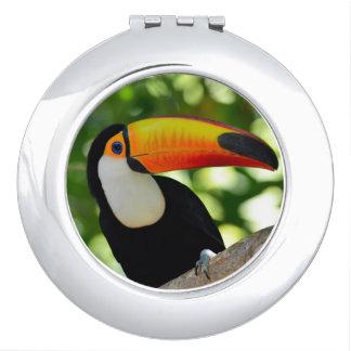 Toucan Vanity Mirror
