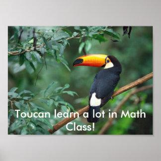 ToucanMath Posters