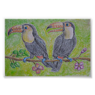 toucans poster
