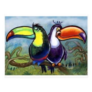Toucans Postcard