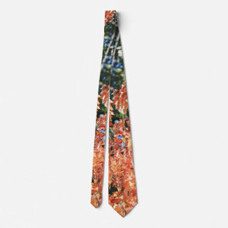 Touch of Fall Neck Tie
