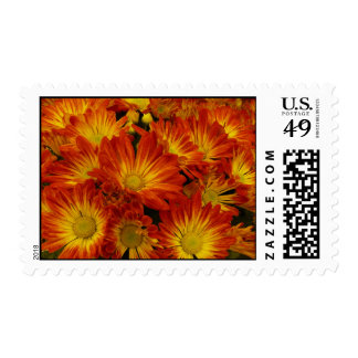 Touch of Fall Stamp