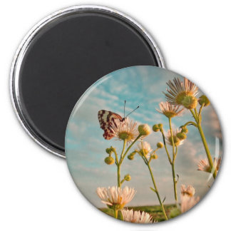 Touch of Magic Dust 2 Inch Round Magnet