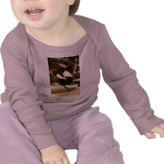 Touch of Nature - Butterfly Tee Shirts