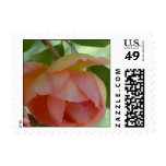 Touch of Romance Postage