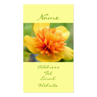 Touch Of Warmth Double-Sided Standard Business Cards (Pack Of 100)