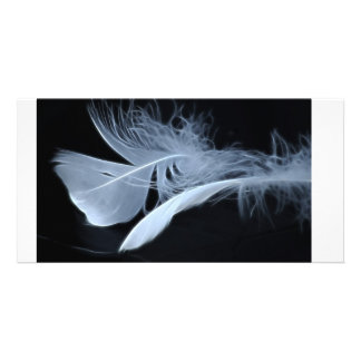 Touching feathers photo card