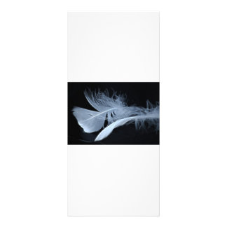 Touching feathers rack card