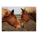 Touching noses greeting card