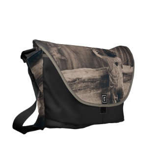 Touching the stars courier bag