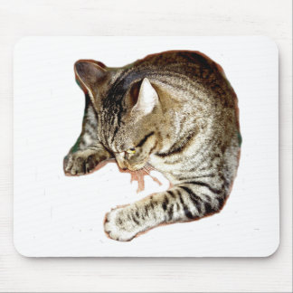Tough Kitty Mouse Pads