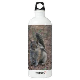 Tough Squirrel Aluminum Water Bottle
