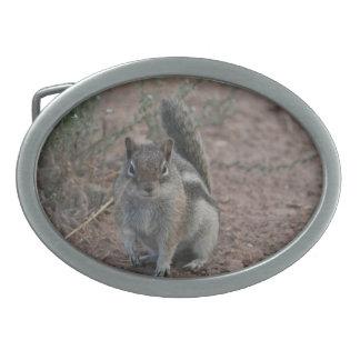 Tough Squirrel Belt Buckle
