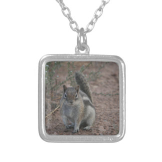 Tough Squirrel Silver Plated Necklace