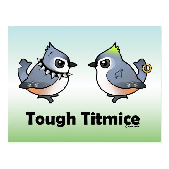 Tough Titmice Postcard