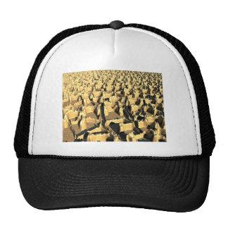 Tough Topography Hat