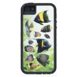 Tough Xtreme of Marine Angelfish iPhone 5 Case