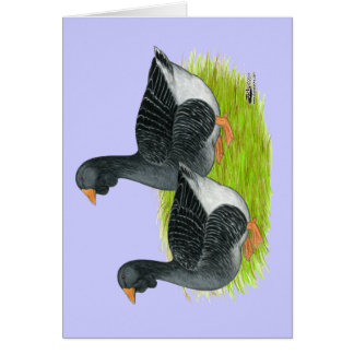 Toulouse Dewlap Geese Card