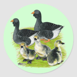 Toulouse Goose Family Classic Round Sticker