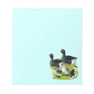 Toulouse Goose Family Memo Pads
