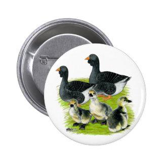 Toulouse Goose Family Pinback Button