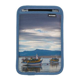 Tour boats on Seno Ultima Esperanza bay Sleeve For iPad Mini