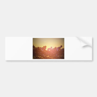 Tour De France Sunset Bumper Sticker