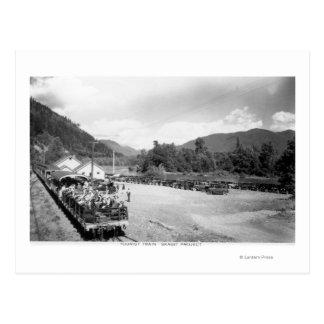 Tourist Train of the Skagit Project Postcard