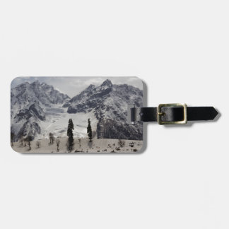 Tourists and locals on the snow luggage tags