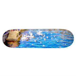 Tourists enjoying the sight of Swans Skateboard