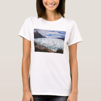 Tourists Looking At Glacier T-Shirt
