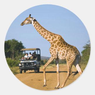 Tourists Watching Giraffe Classic Round Sticker