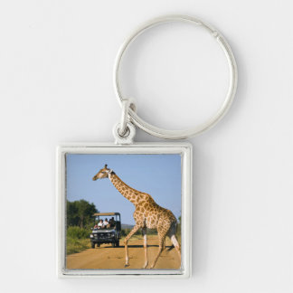 Tourists Watching Giraffe Silver-Colored Square Keychain