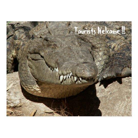 Tourists Welcome !! - Crocodile - Postcard