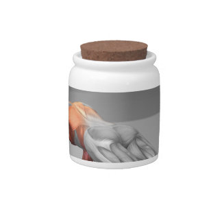 Towel Fly Exercise 2 Candy Jar