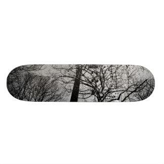 Tower behind trees skate board decks