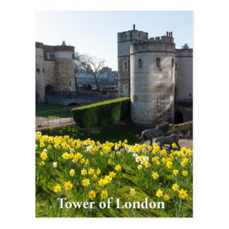 Tower of London, England UK Postcard
