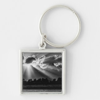 Towering And Distinctive Cathedral Group 2 Keychain