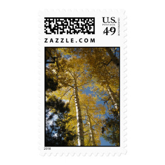 Towering Aspens (11) Postage Stamps