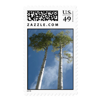 Towering Aspens (4) Postage Stamps