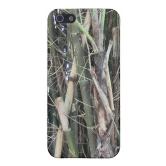 Towering Bamboo Cell Phone Case For iPHone 5/5S