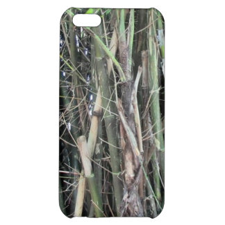 Towering Bamboo Cell Phone Case For iPhone 5C